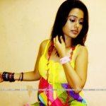 mendichya-panavar-etv-marathi-serial-actress