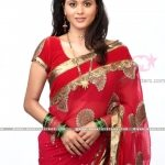 deepti-shrikant-in-saree
