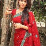 madhavi-kulkarni-in-saree-photos