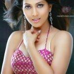 swapnanchya-palikadale-actress-madhavi-kulkarni