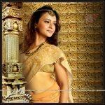 Minal-Ghorapade-Marathi-Actress-in-saree-4