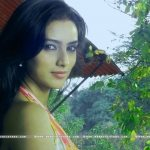 pallavi-subhash-actress-wallpapers-5